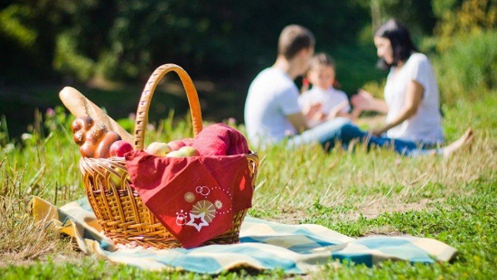 Майские праздники на природе: полезные советы