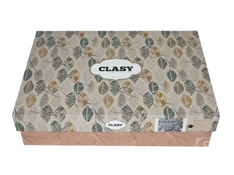 Постельное белье Clasy. Flanel упаковка
